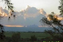 Mauritius-309