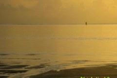 Mauritius-585