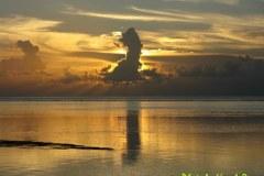 Mauritius-591