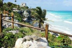 Yucatan & Florida